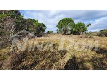 Landwirtschaftlich genutzter Boden, Verkauf, Nin, Zaton